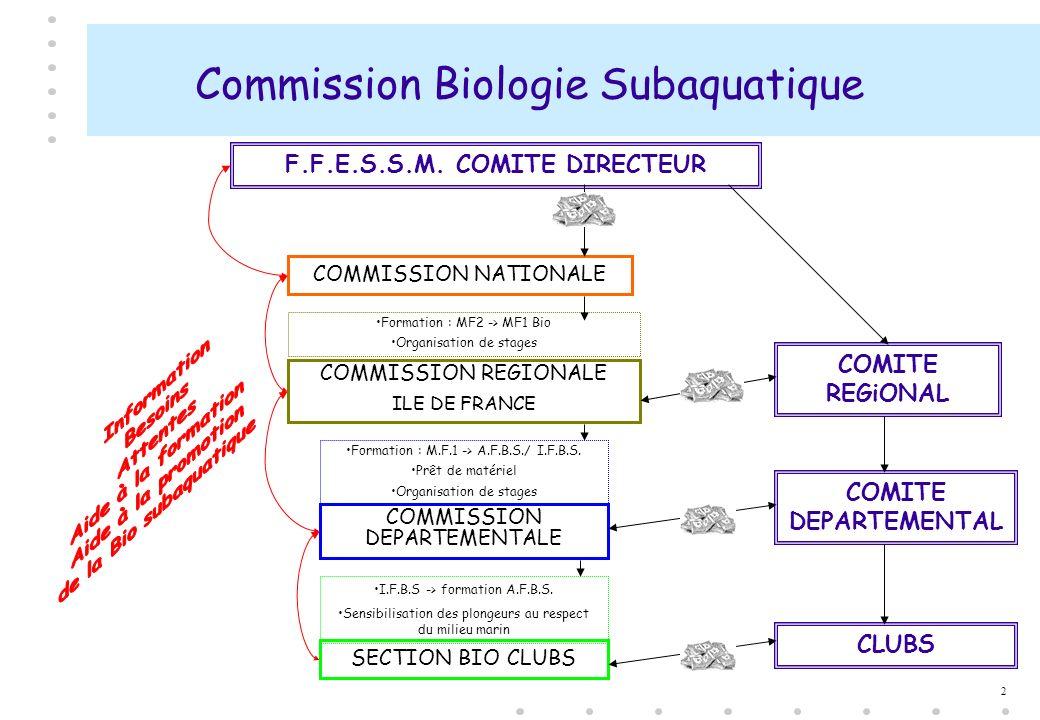 2 Commission Biologie Subaquatique COMMISSION DEPARTEMENTALE COMMISSION REGIONALE ILE DE FRANCE COMMISSION NATIONALE SECTION BIO CLUBS F.F.E.S.S.M. CO