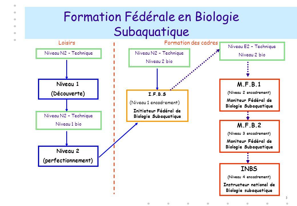 3 Formation Fédérale en Biologie Subaquatique Niveau 2 (perfectionnement) Niveau N2 - Technique I.F.B.S (Niveau 1 encadrement) Initiateur Fédéral de B