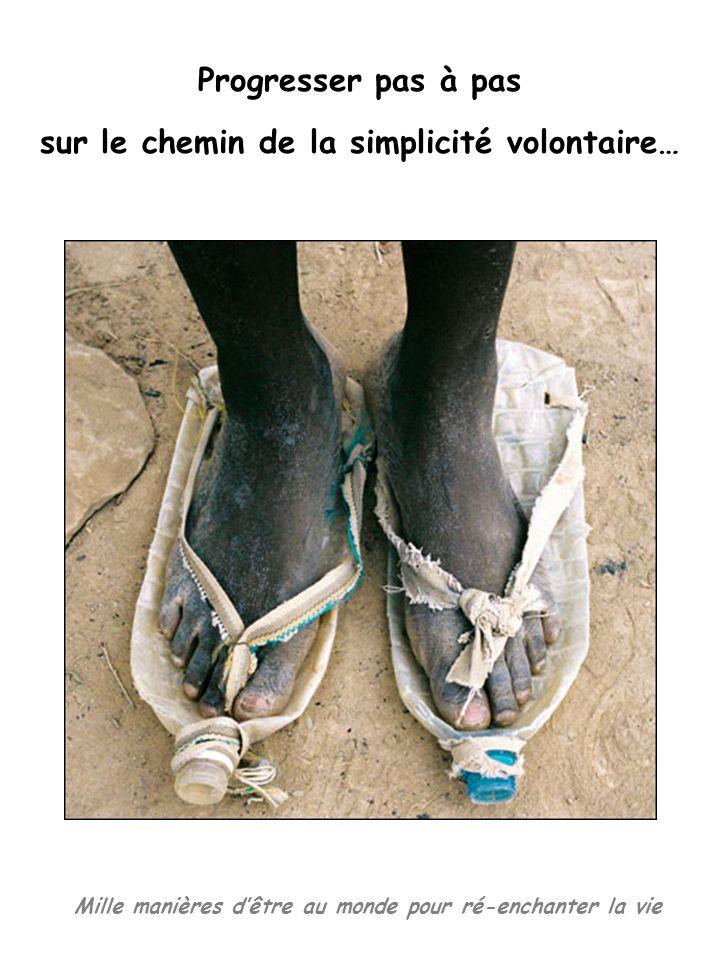 Mille manières dêtre au monde pour ré-enchanter la vie Progresser pas à pas sur le chemin de la simplicité volontaire…
