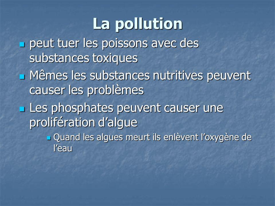 La pollution peut tuer les poissons avec des substances toxiques peut tuer les poissons avec des substances toxiques Mêmes les substances nutritives peuvent causer les problèmes Mêmes les substances nutritives peuvent causer les problèmes Les phosphates peuvent causer une prolifération dalgue Les phosphates peuvent causer une prolifération dalgue Quand les algues meurt ils enlèvent loxygène de leau Quand les algues meurt ils enlèvent loxygène de leau