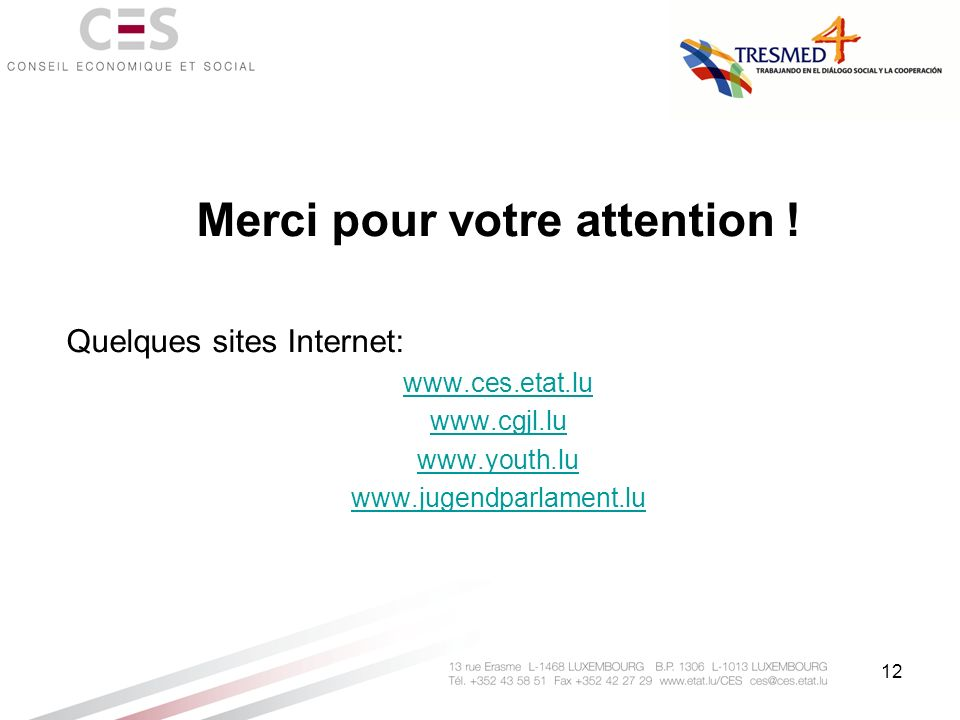 12 Merci pour votre attention ! Quelques sites Internet: www.ces.etat.lu www.cgjl.lu www.youth.lu www.jugendparlament.lu