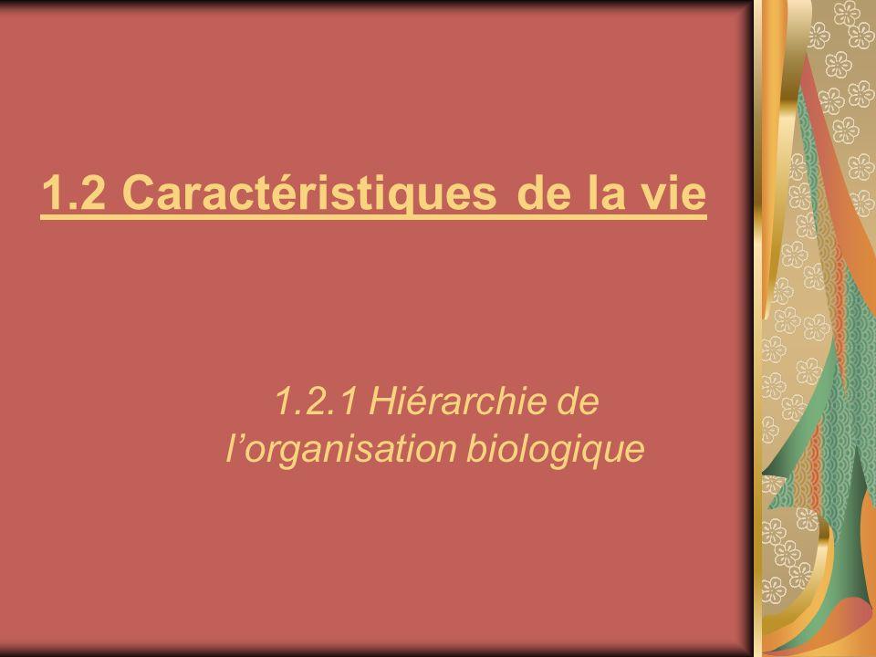 1.2 Caractéristiques de la vie 1.2.1 Hiérarchie de lorganisation biologique