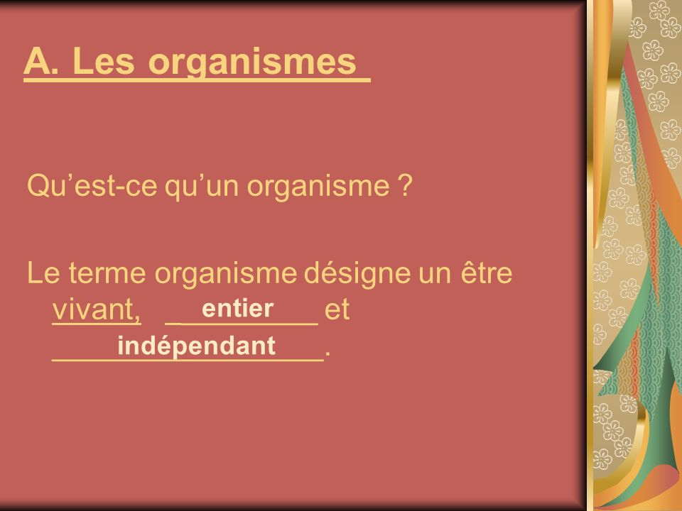 A. Les organismes Quest-ce quun organisme ? Le terme organisme désigne un être vivant, ________ et ________________. entier indépendant