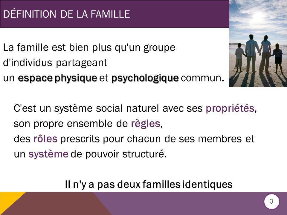 DÉFINITION DE LA FAMILLE La famille est bien plus qu un groupe d individus partageant espace physique psychologique un espace physique et psychologique commun.