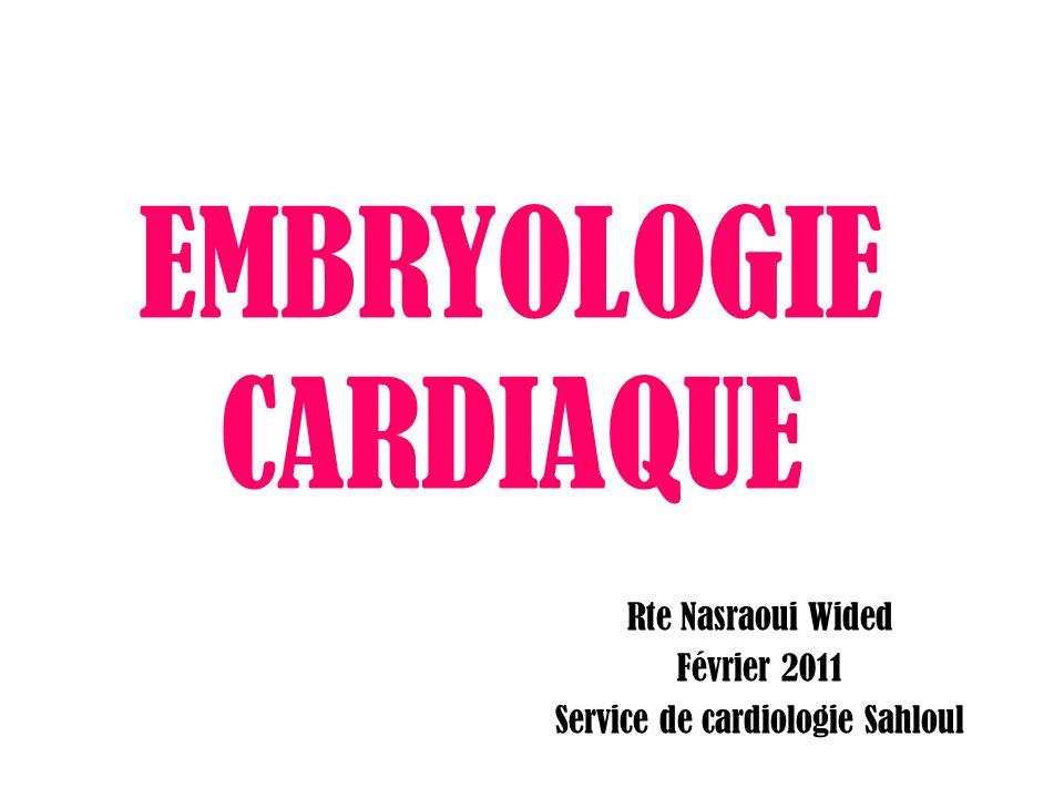 EMBRYOLOGIE CARDIAQUE Rte Nasraoui Wided Février 2011 Service de cardiologie Sahloul