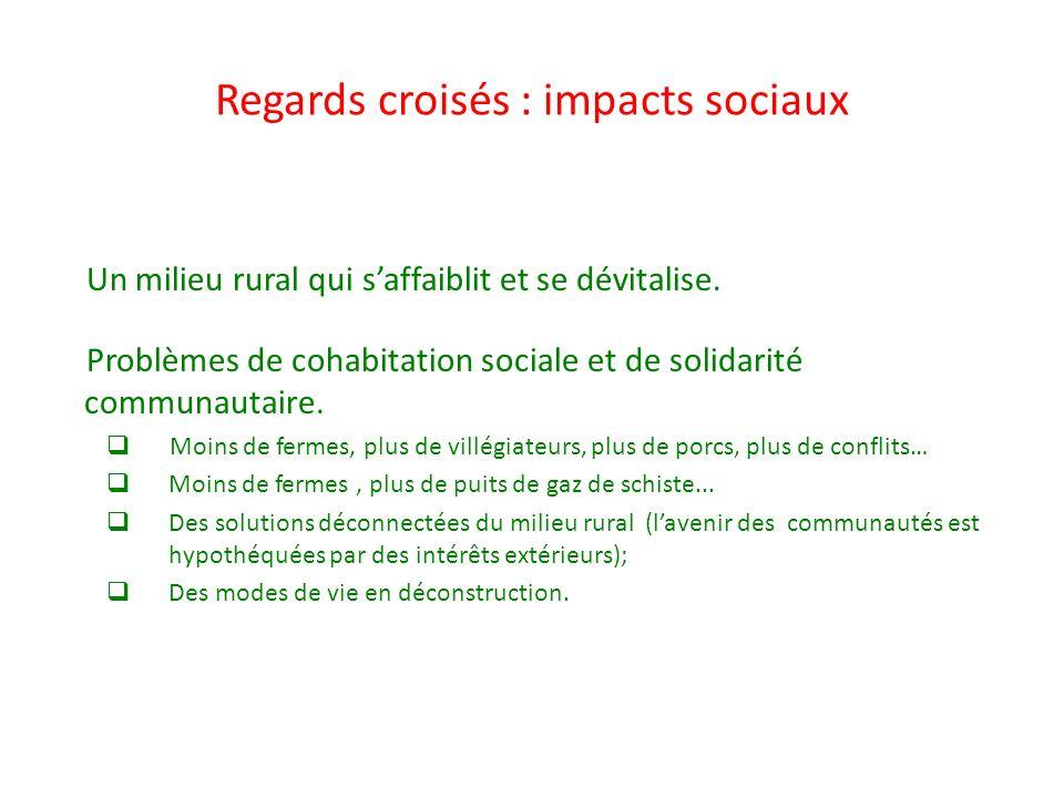 Regards croisés : impacts sociaux Un milieu rural qui saffaiblit et se dévitalise. Problèmes de cohabitation sociale et de solidarité communautaire. M
