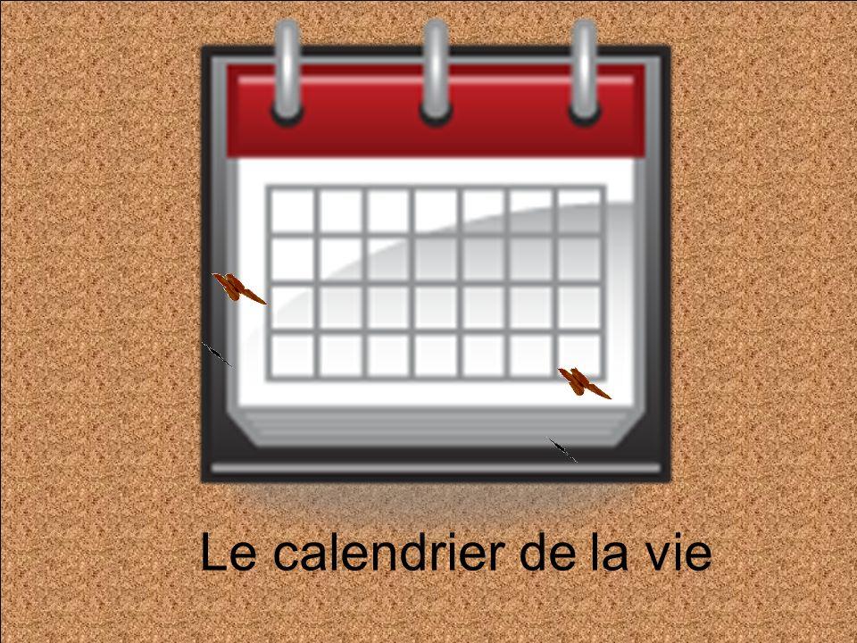 Le calendrier de la vie