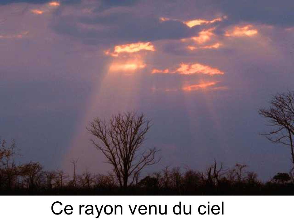 La lumière de Jésus