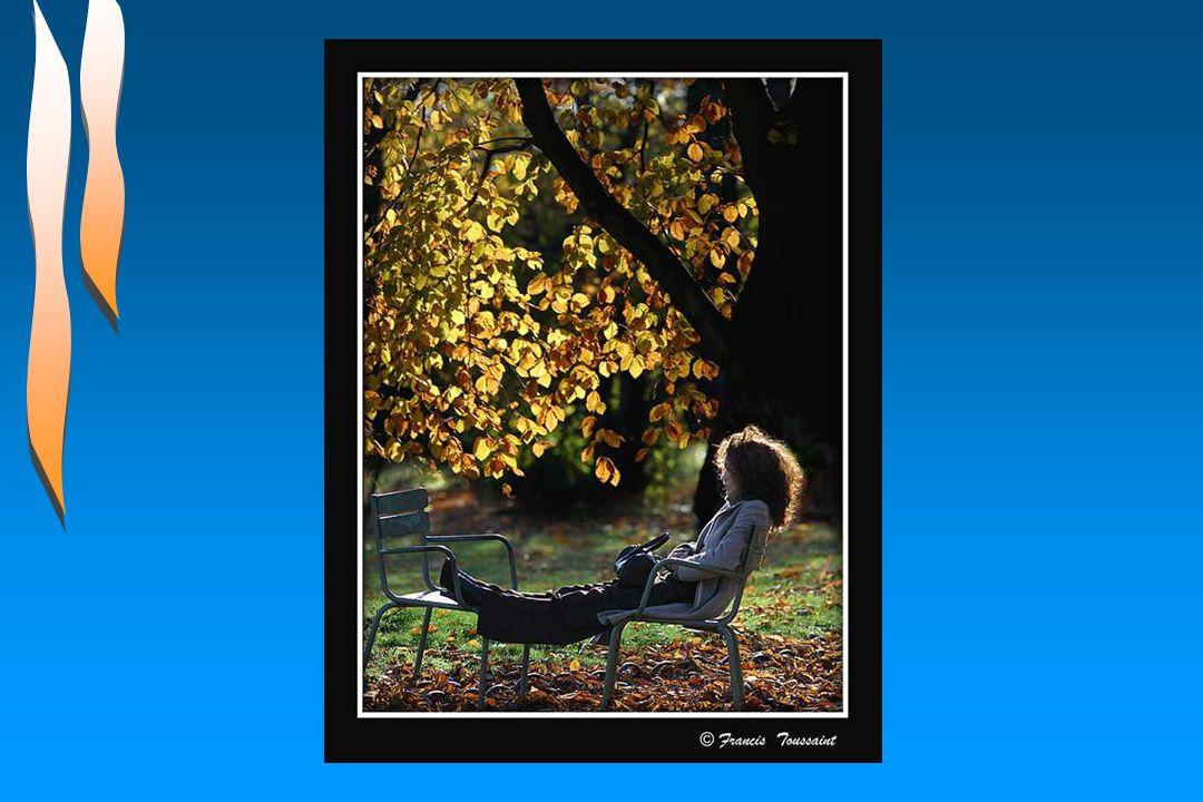 Un oiseau qui fait la roue Sur un arbre déjà roux Et son cri par-dessus tout Que c'est beau, c'est beau la vie