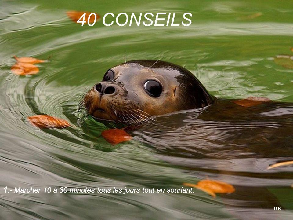R.B. 40 CONSEILS 1.- Marcher 10 à 30 minutes tous les jours tout en souriant.