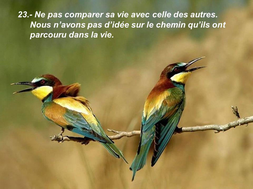 23.- Ne pas comparer sa vie avec celle des autres.