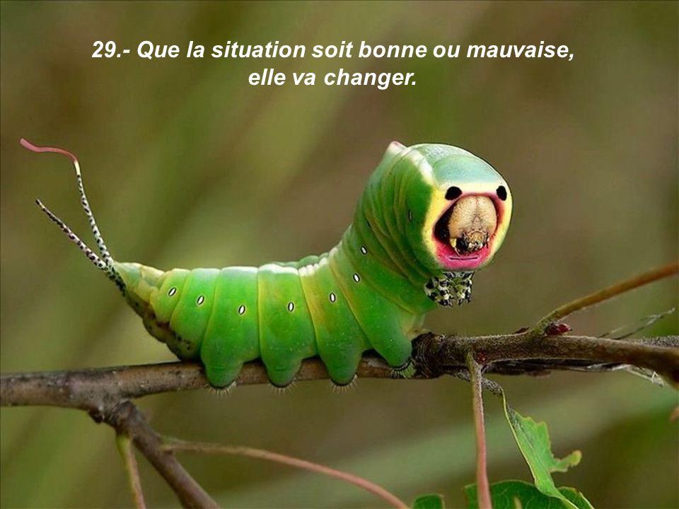 29.- Que la situation soit bonne ou mauvaise, elle va changer.