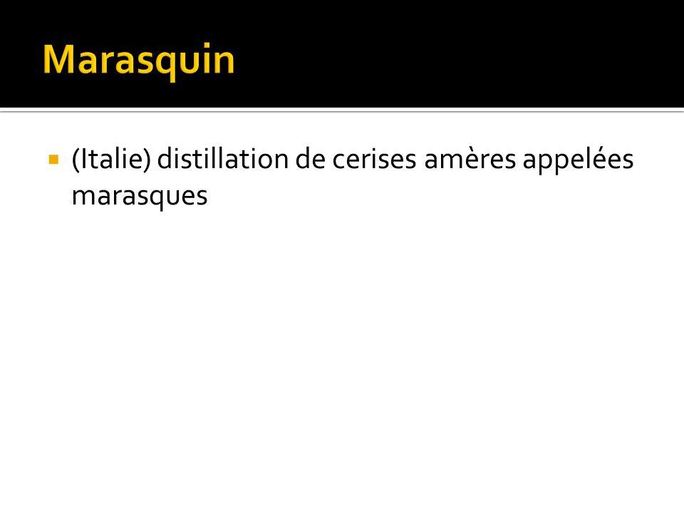 (Italie) distillation de cerises amères appelées marasques