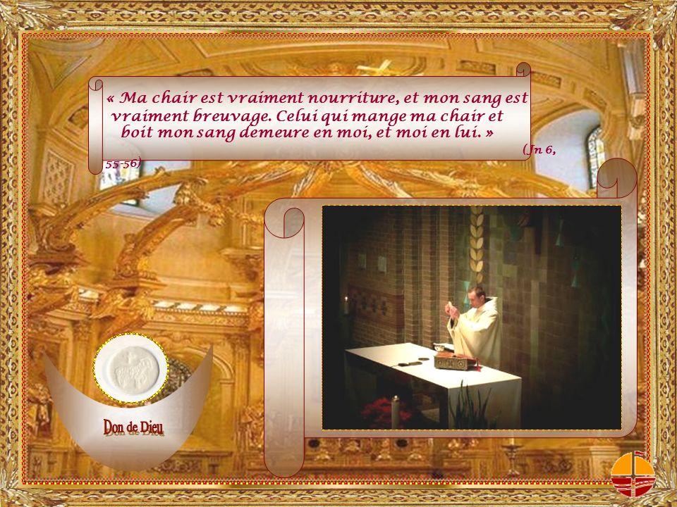 Regarde cette offrande avec amour et, dans ta bienveillance, accepte-la. (Prière eucharistique I)