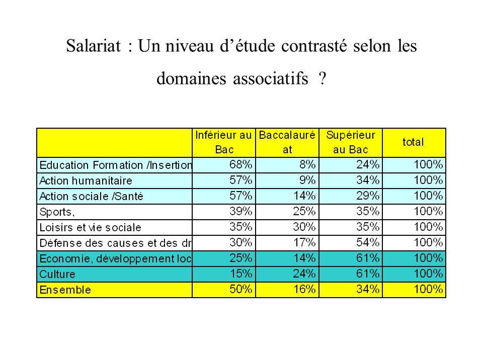 Salariat : Un niveau détude contrasté selon les domaines associatifs ?