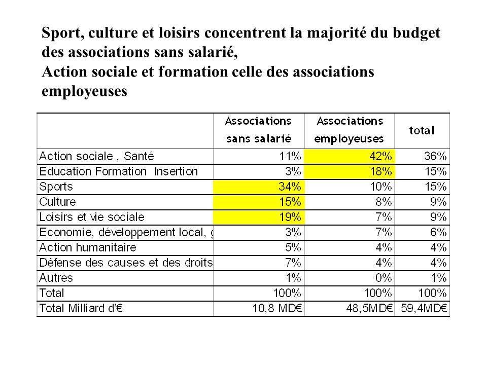 Sport, culture et loisirs concentrent la majorité du budget des associations sans salarié, Action sociale et formation celle des associations employeu