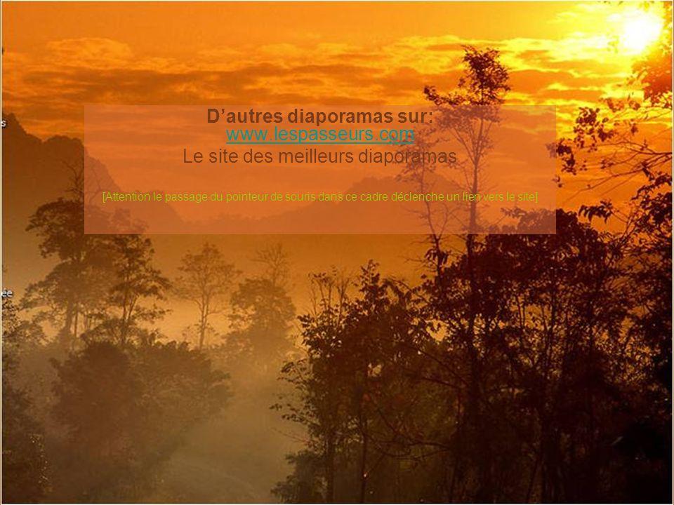 La vie…Et ensuite… © Clara http://lestextesdeclara.com Bonne journée Musique : L air du soir André Gagnon Création :Lise Tardif (Nov.2008) www.chezclaudy.com