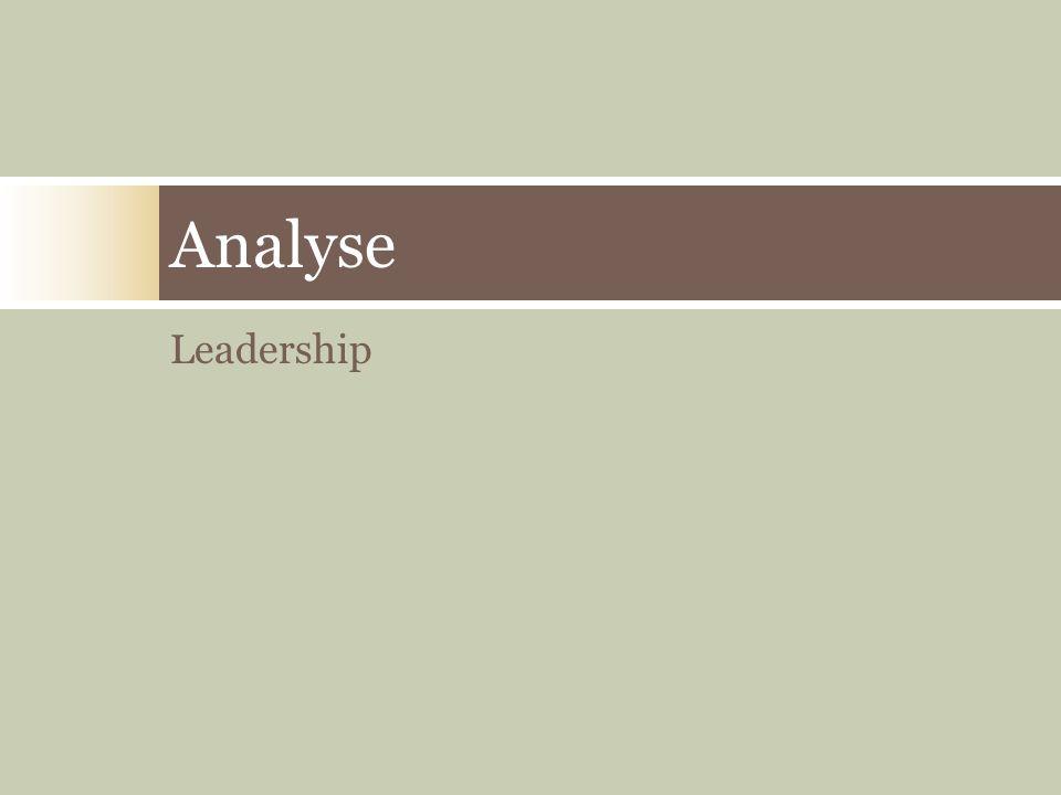 Leadership Analyse