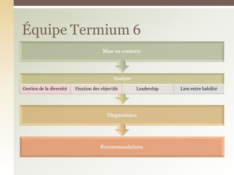 Recommandations Diagnostique Analyse Gestion de la diversitéFixation des objectifsLeadershipLien entre habilité Mise en contexte Équipe Termium 6