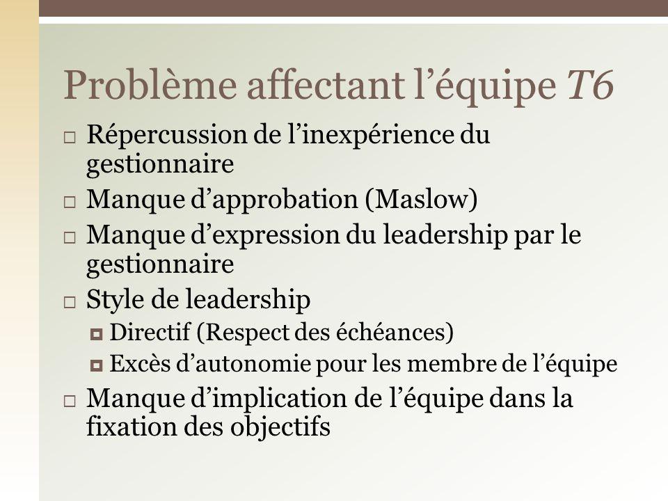 Répercussion de linexpérience du gestionnaire Manque dapprobation (Maslow) Manque dexpression du leadership par le gestionnaire Style de leadership Di