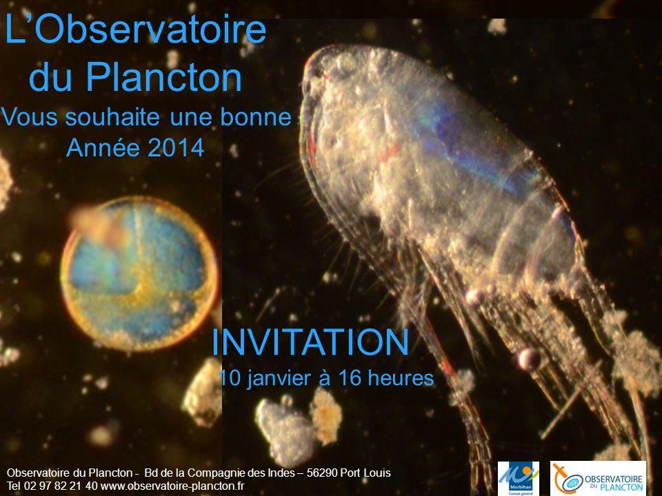 LObservatoire du Plancton Vous souhaite une bonne Année 2014 Observatoire du Plancton - Bd de la Compagnie des Indes – 56290 Port Louis Tel 02 97 82 2