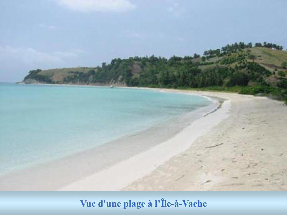 Jai visité Cormier Plage et Labadie qui sont deux jolies plages dans le nord; elles sont bien entretenues et sont régulièrement visitées par les étran