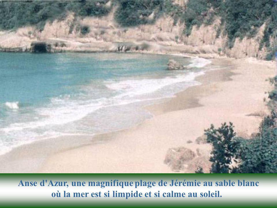 Vue en perspective du col de lAnse dAzur, cette plage magnifique aux eaux turquoises. Un aperçu des plages du sud d'Haïti