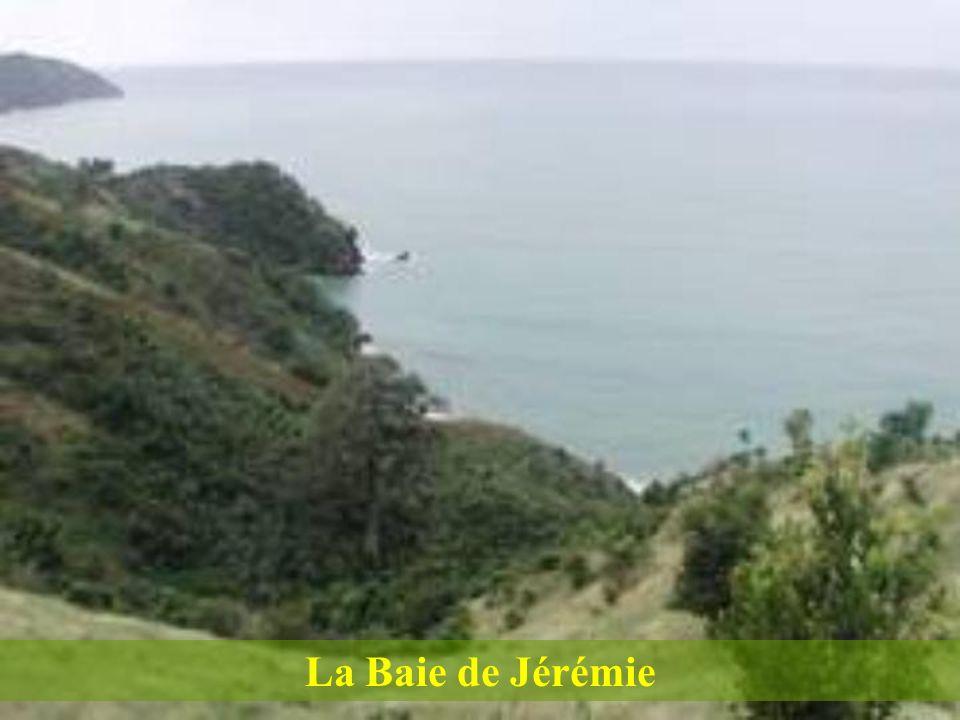 Ces deux plages adjacentes de Petit-Goâve sont absolument magnifiques comme vous pouvez le voir à la page suivante.