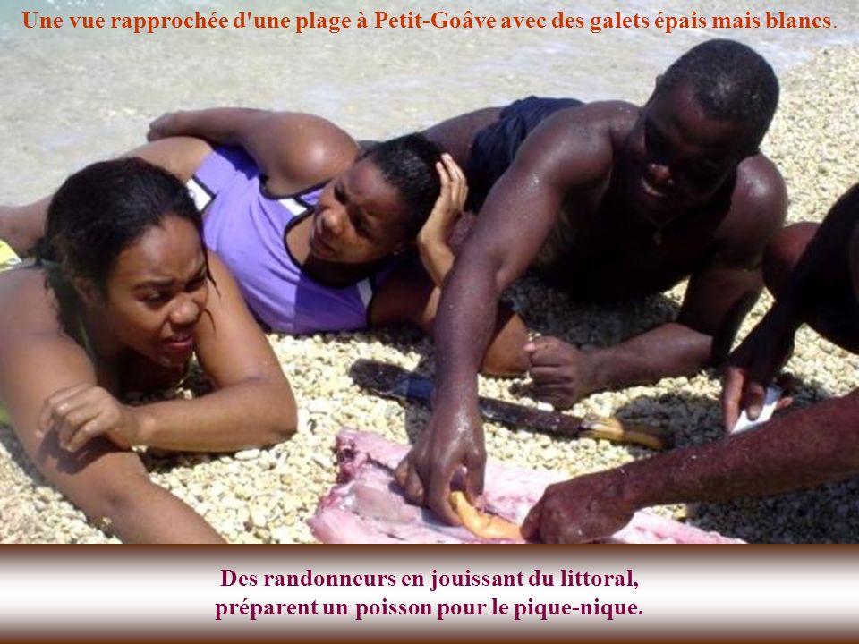 Haïti doit se positionner sur le marché touristique international comme une destination historique et culturelle unique, sûre, compétitive et fiable,