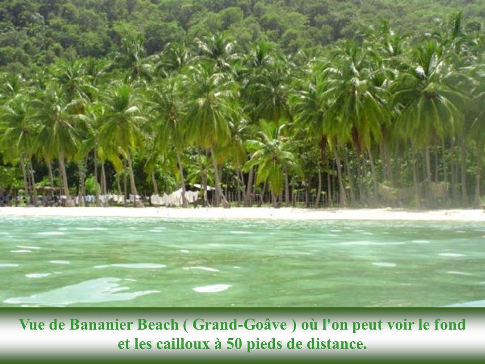 Ces deux plages adjacentes de Petit-Goâve sont absolument magnifiques comme vous pouvez le voir à la page suivante. Pas grande chose à dire de plus. P