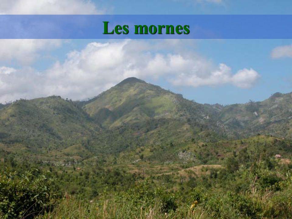 Si lon développait le tourisme en Haïti, il pourrait représenter un facteur de préservation du patrimoine national. À 90 minutes de Miami, la plaque t