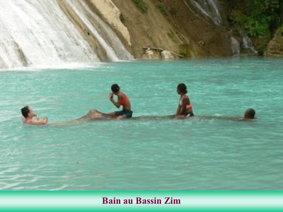 La topographie dHaïti est accidentée, elle contient 75 % de montagnes et 25 % de plaines. Cette coexistence de plaines et de montagnes offre à Haïti u