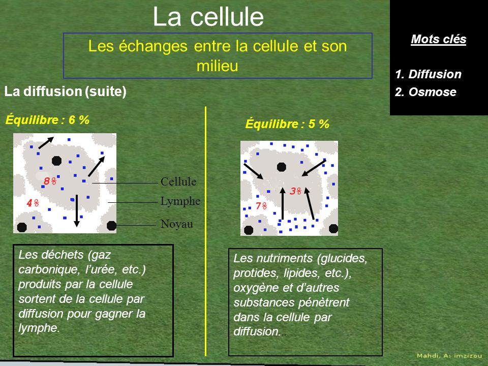 La diffusion (suite) Mots clés 1.Diffusion 2.