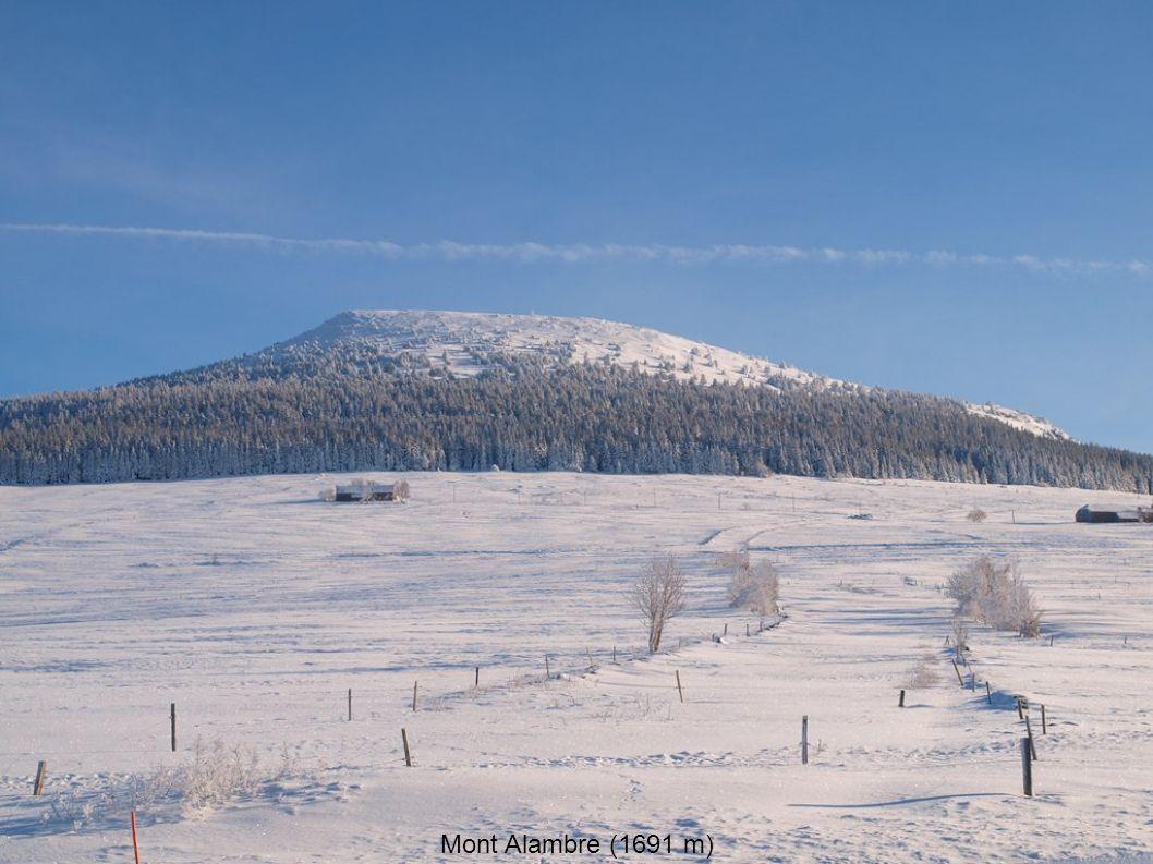Mont Alambre (1691 m)