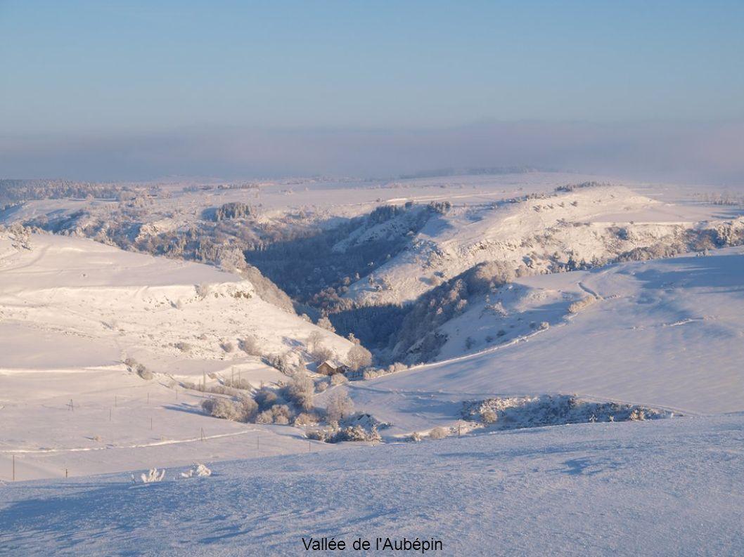 Vallée de l'Aubépin