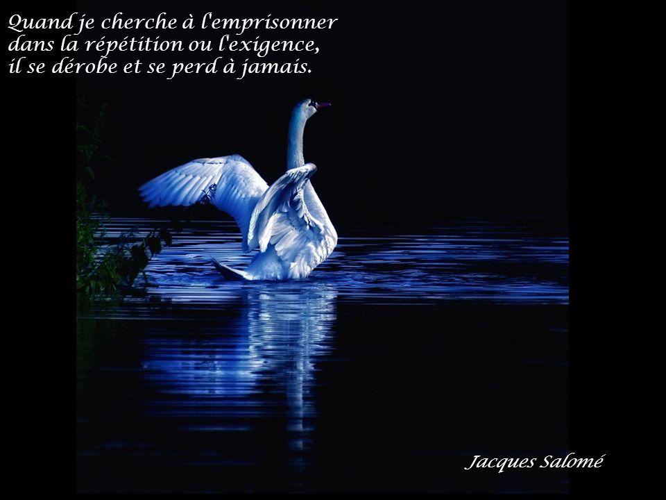 http://desjolieschoses.e-monsite.com/ Interprète : Sia Morceau : My love