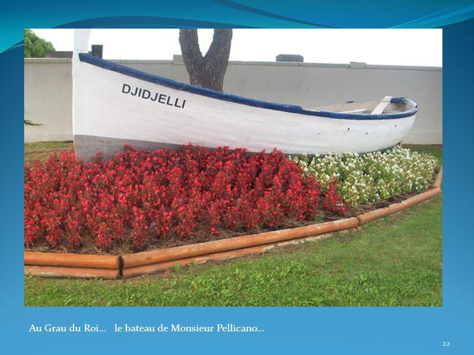 Au Grau du Roi… le bateau de Monsieur Pellicano… 22