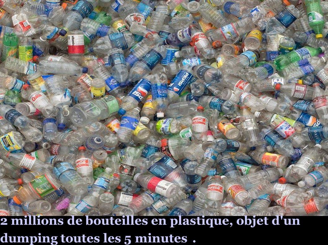 2 millions de bouteilles en plastique, objet d'un dumping toutes les 5 minutes.