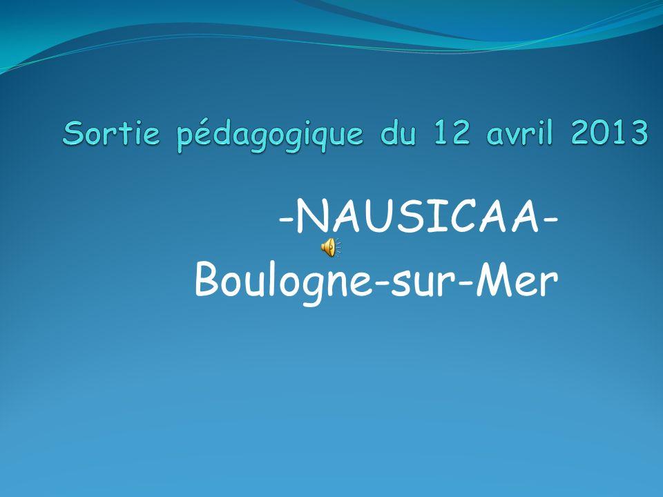 -NAUSICAA- Boulogne-sur-Mer