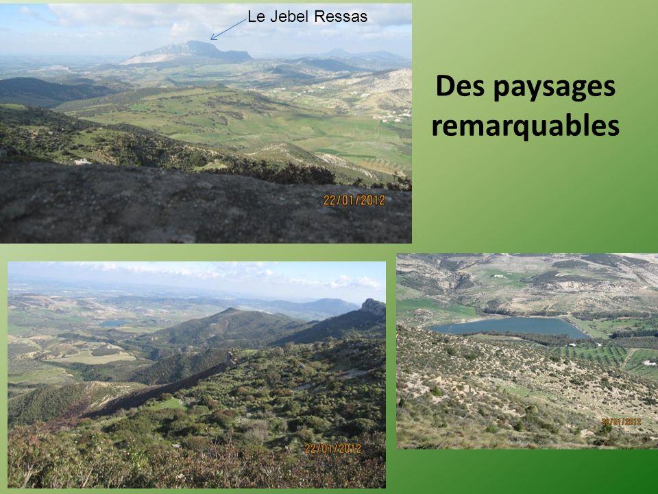 Des paysages remarquables Le Jebel Ressas