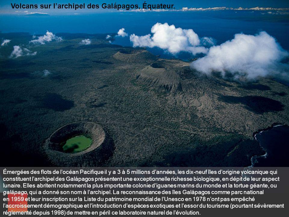La forme fuselée de lîle Tortuga émerge des eaux telle léchine dun gigantesque monstre marin. Ce jeune cratère, né il y a moins dun million dannées, t