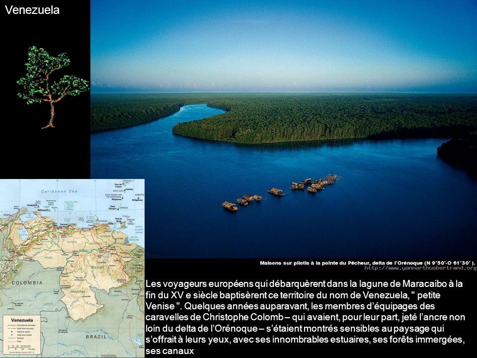 Émergées des flots de locéan Pacifique il y a 3 à 5 millions dannées, les dix-neuf îles dorigine volcanique qui constituent larchipel des Galápagos pr