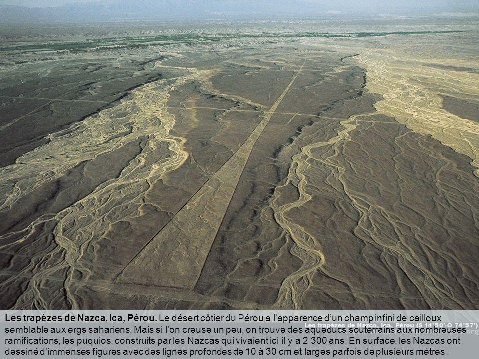 Dessin de colibri à Nazca, Pérou. Il y a plus de deux mille ans, le peuple Nazca a creusé des sillons dans le sol désertique de la pampa péruvienne, d