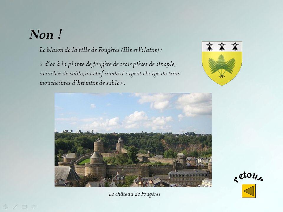 Oui ! Cest le blason de la ville de Rennes, capitale de la Bretagne, « palé d'argent et de sable de six pièces, au chef d'argent chargé de cinq mouche