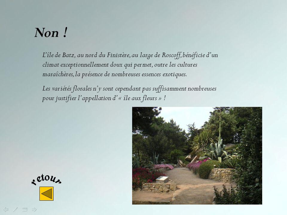 Quelle île bretonne appelle-t-on lîle aux fleurs ? Lîle de Batz Lîle de Sein Lîle de Bréhat