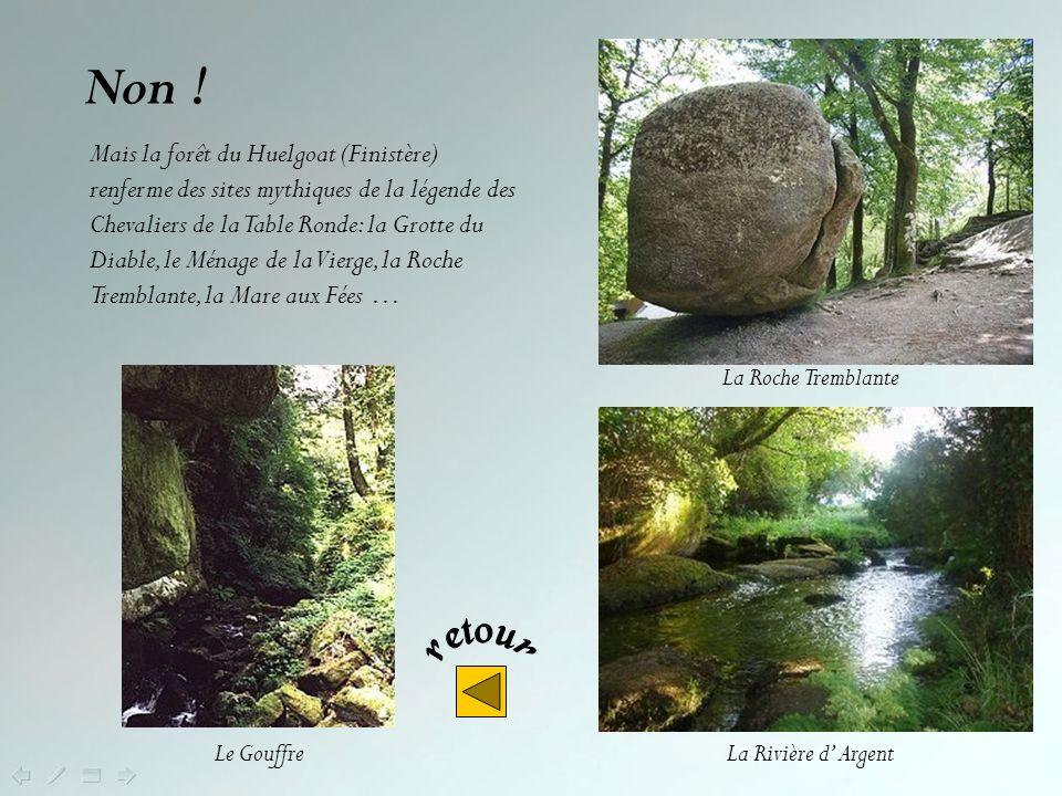 Par contre à Carnac (Morbihan) on peut voir des alignements de mégalithes (dolmens et menhirs) formant un ensemble unique au monde. Les sites du Ménec