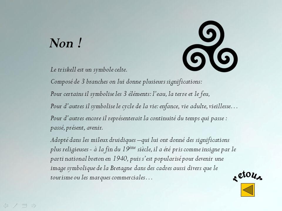 Comment se nomme le drapeau breton ? Le triskel Le gwenn ha du Le bro goz
