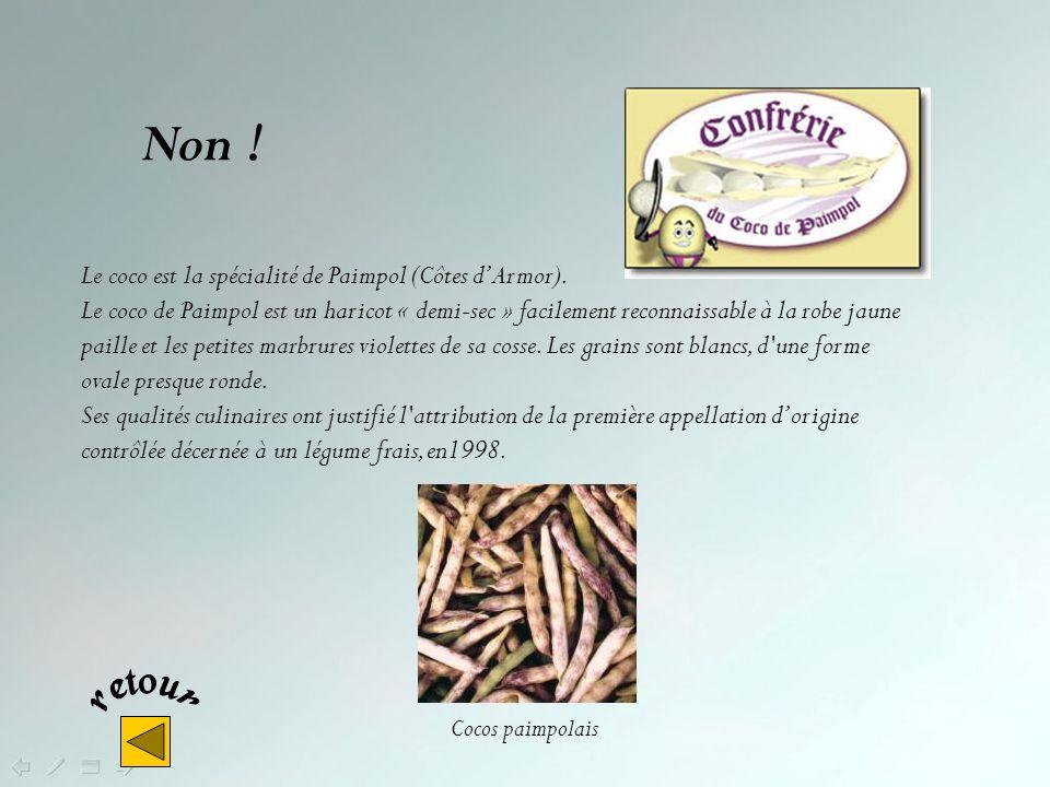 Non .L oignon rosé est la spécialité de Roscoff (Finistère).