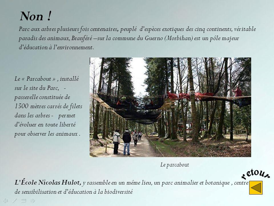 Non ! Mais le parc zoologique de Pont-Scorff (Morbihan) présente une importante collection de grands mammifères, de nombreux félins, de primates, dois