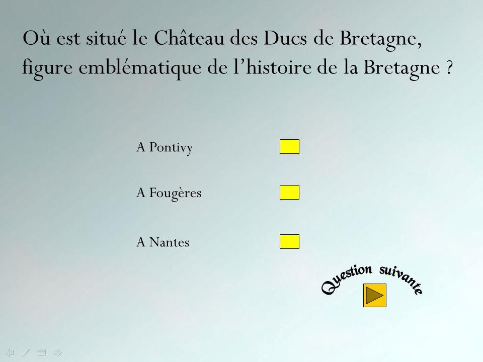 Non ! Le kig ha farz, spécialité du Léon (Nord- Finistère), est comparable au pot au feu - avec viande de bœuf et légumes - mais sen diférencie par la